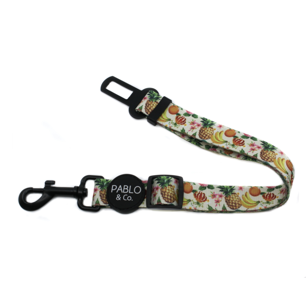 Pablo & Co Fruity Seat Belt | Smack Bang