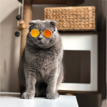 Yellow/Orange Mirror Cat Sunglasses | Smack Bang