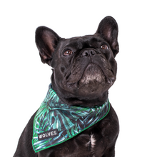 Wolves of Wellington Florida Mesh Dog Bandana | Smack Bang