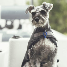 Mr Soft Top Waterproof Wool-Lined Dog Raincoat Schnauzer | Smack Bang