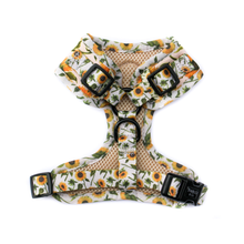 Pablo & Co Sunflowers Harness | Smack Bang