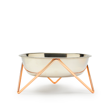 Bendo Luxe Woof Raised Dog Bowl Copper | Smack Bang