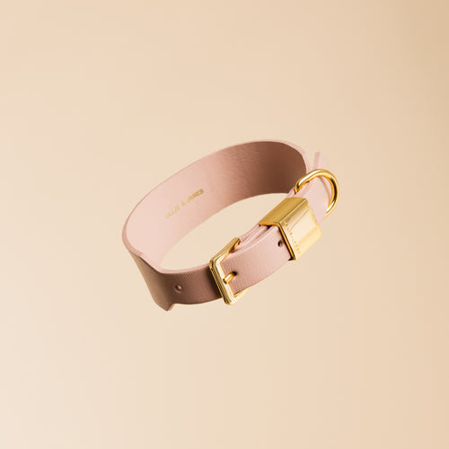 Ollie & James Blush Leather Dog Collar | Smack Bang