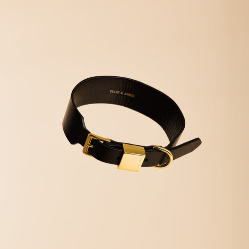 Ollie & James Sable Leather Dog Collar | Smack Bang