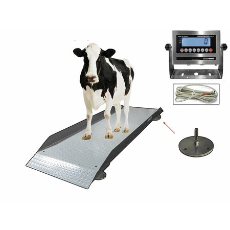 OPTIMA OP-929 Livestock & Cattle Alleyway Scale 5000 lbs x 1 lb