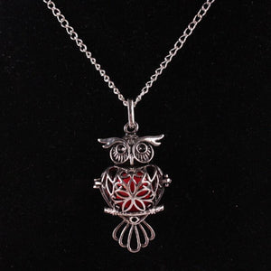 Tredfashions Owl Heart Necklace - Tred Fashions