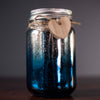 Two Tone Silver/Blue Firefly Jar