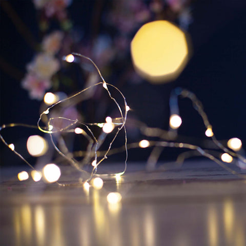 Silver Wire Lights