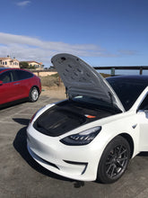 Oscar and Hamish luggage in a Tesla model 3