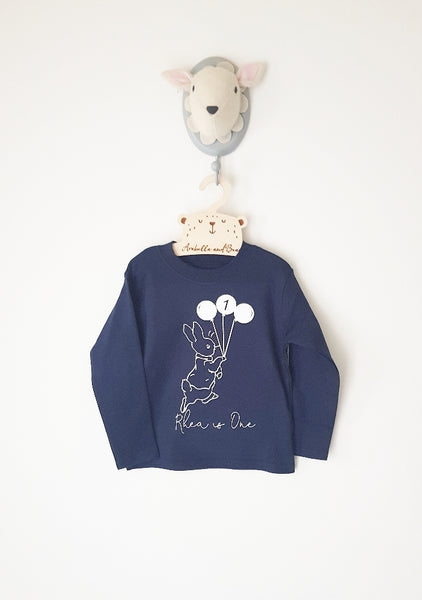 Peter Rabbit birthday top - various colours