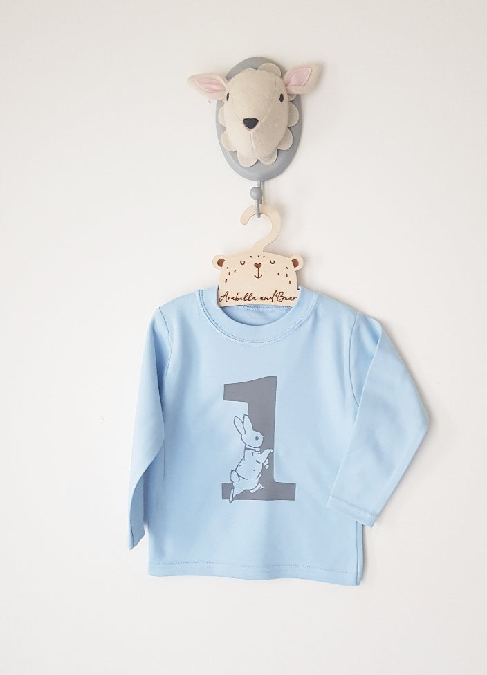Peter Rabbit Blue and grey birthday top - long - short sleeved