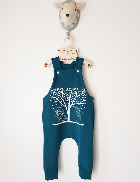 Peter Rabbit winter wonderland dungarees/romper