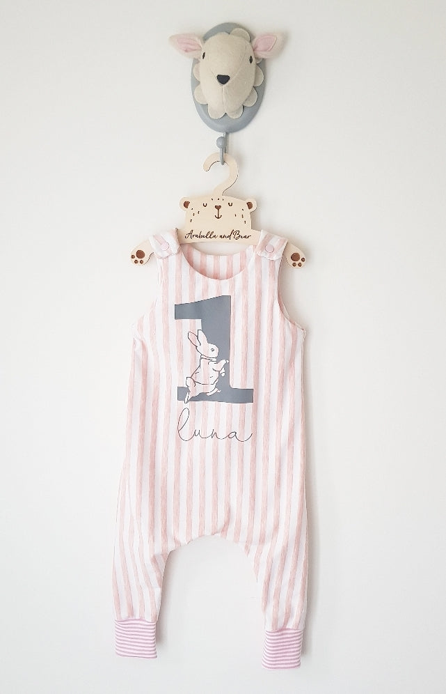 Peter Rabbit birthday romper in candy stripe- blue or pink