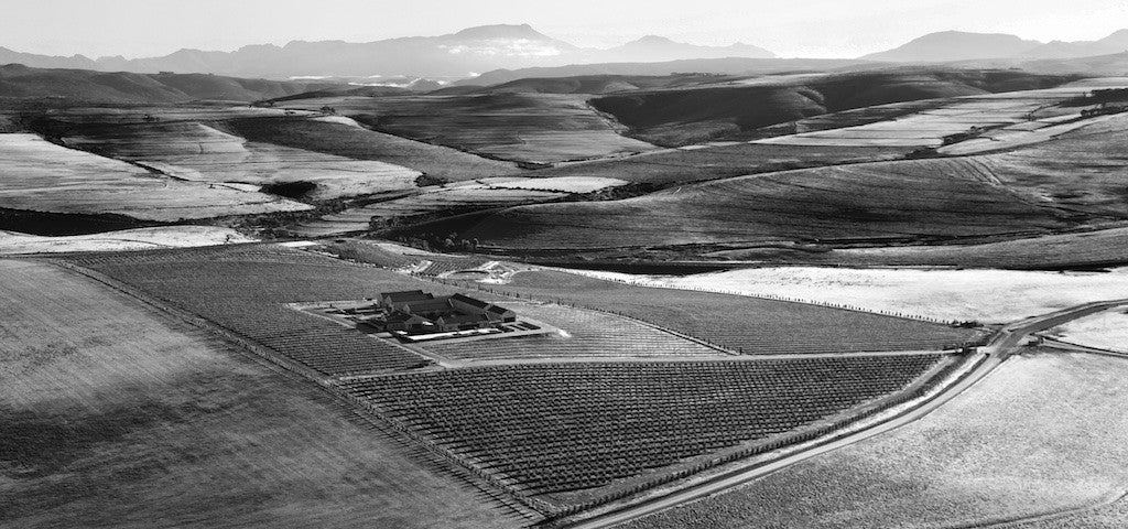 Arial view of Gabrielskloof, black and white