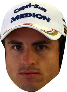 Adrien Sutil FORMULA 1 Celebrity Face Mask FANCY DRESS HEN BIRTHDAY PARTY FUN STAG DO HEN