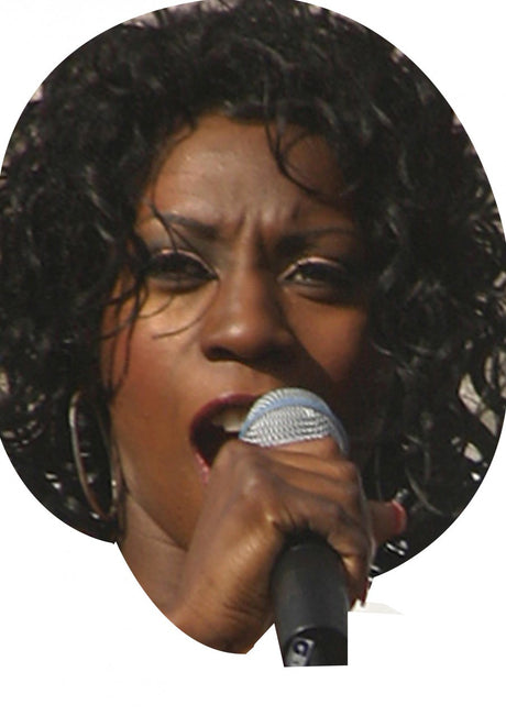 Heather Small On A Stick Face Mask Celebrity FANCY DRESS HEN BIRTHDAY PARTY FUN STAG DO HEN