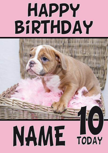 Puppy5 DOGS AND Funny Puppy Kids Adult Personalised Birthday Card