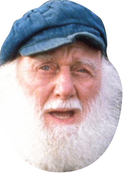 Uncle Albert Face Mask FANCY DRESS HEN BIRTHDAY PARTY FUN STAG DO HEN