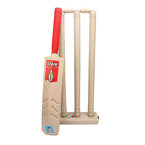 Cricket Bat Plus Wicket Set  Size 4 for Kids