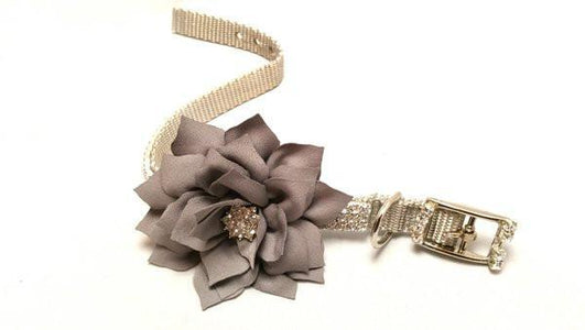 Diamonds and Flowers Dog Collar