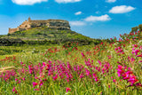 Comino, Blue Lagoon, GOZO and Caves - Adult Ticket