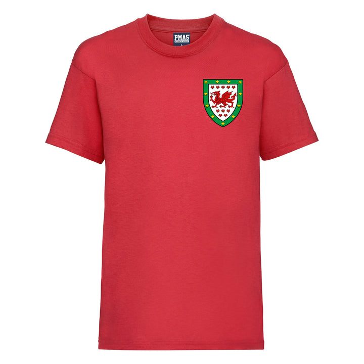 Electric Pink and White, 12-13 yrs 34 Print Me A Shirt Kids Customisable Wales Cymru Style Football Shirt and Shorts