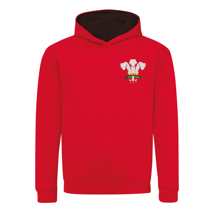 Kids Wales Welsh Vintage Retro Embroidered Rugby Football Sport Hoodie in Red