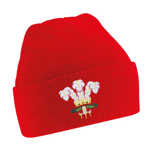 Kids Wales Welsh Vintage Retro Embroidered Rugby Football Beanie Hat