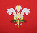 Wales Welsh Vintage Retro Embroidered Rugby Football Sport Hoodie in Adult & Kids Sizes in Red Badge