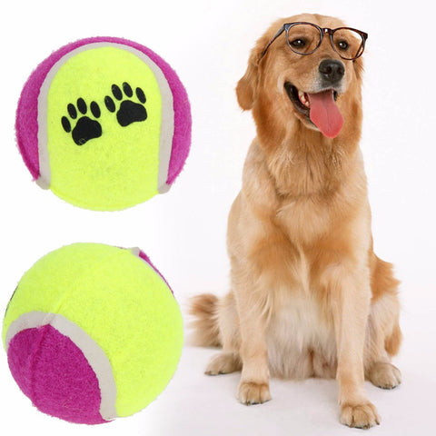 Tennis Balls Dog Toys  Run Fetch Throw Play