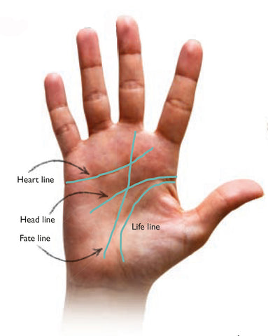 Everyday Palmistry 4 major lines