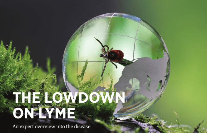 Get the lowdown on Lyme with InFocus Magazine