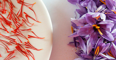 Ingredient Spotlight: Saffron