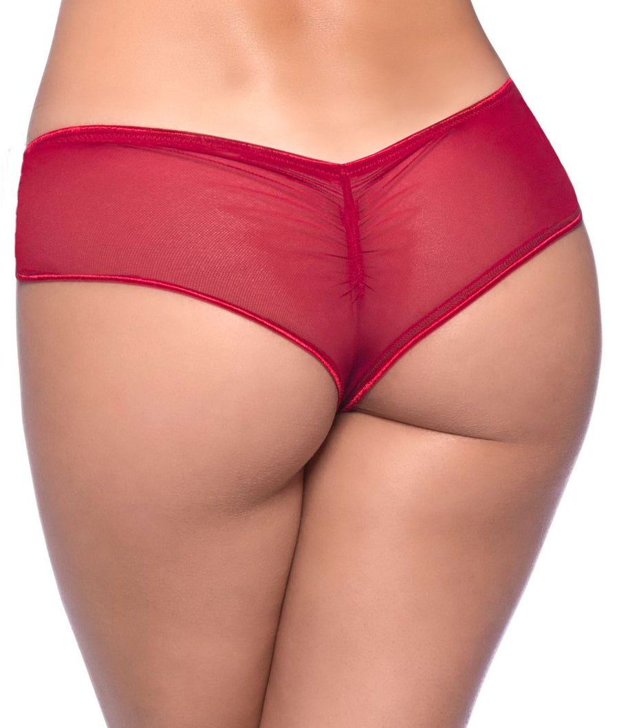 Red||Mesh Side Cheeky Hipster in Red