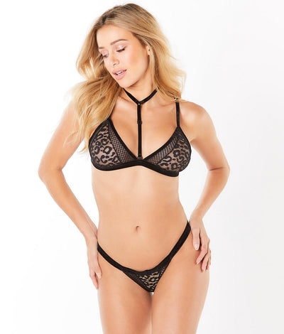 Mesh & Lace Bra Set in Black