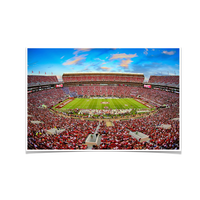 Alabama Crimson Tide Bryant-Denny Football Stadium Tuscaloosa Photo Print Wall Decor