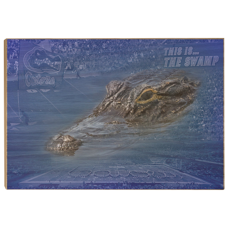 Florida Gators Gator Swamp Officially Licensed Wall Art College Wall Art