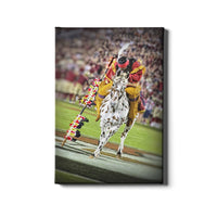 Florida State Seminoles Osceola Spear Canvas