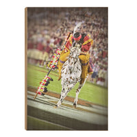 Florida State Seminoles Osceola Spear Wood Art