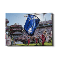 South Carolina Gamecocks Taking the Field Canvas