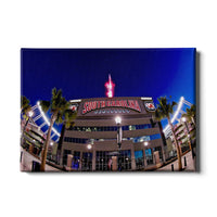 South Carolina Gamecocks Williams Brice䋢 Fireworks Canvas