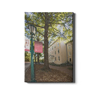 South Carolina Gamecocks No Limits Canvas