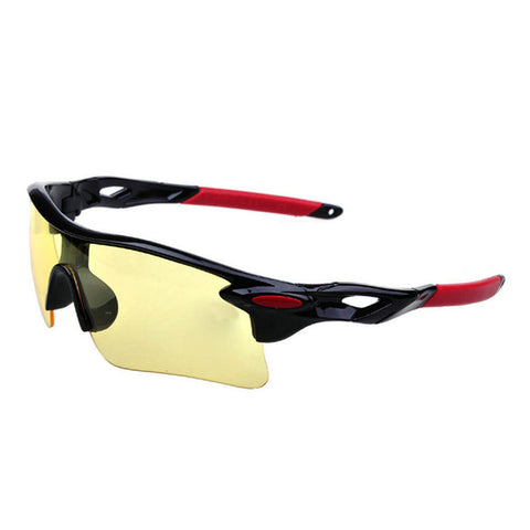 Fishing Driving Sunglasses - East Gold