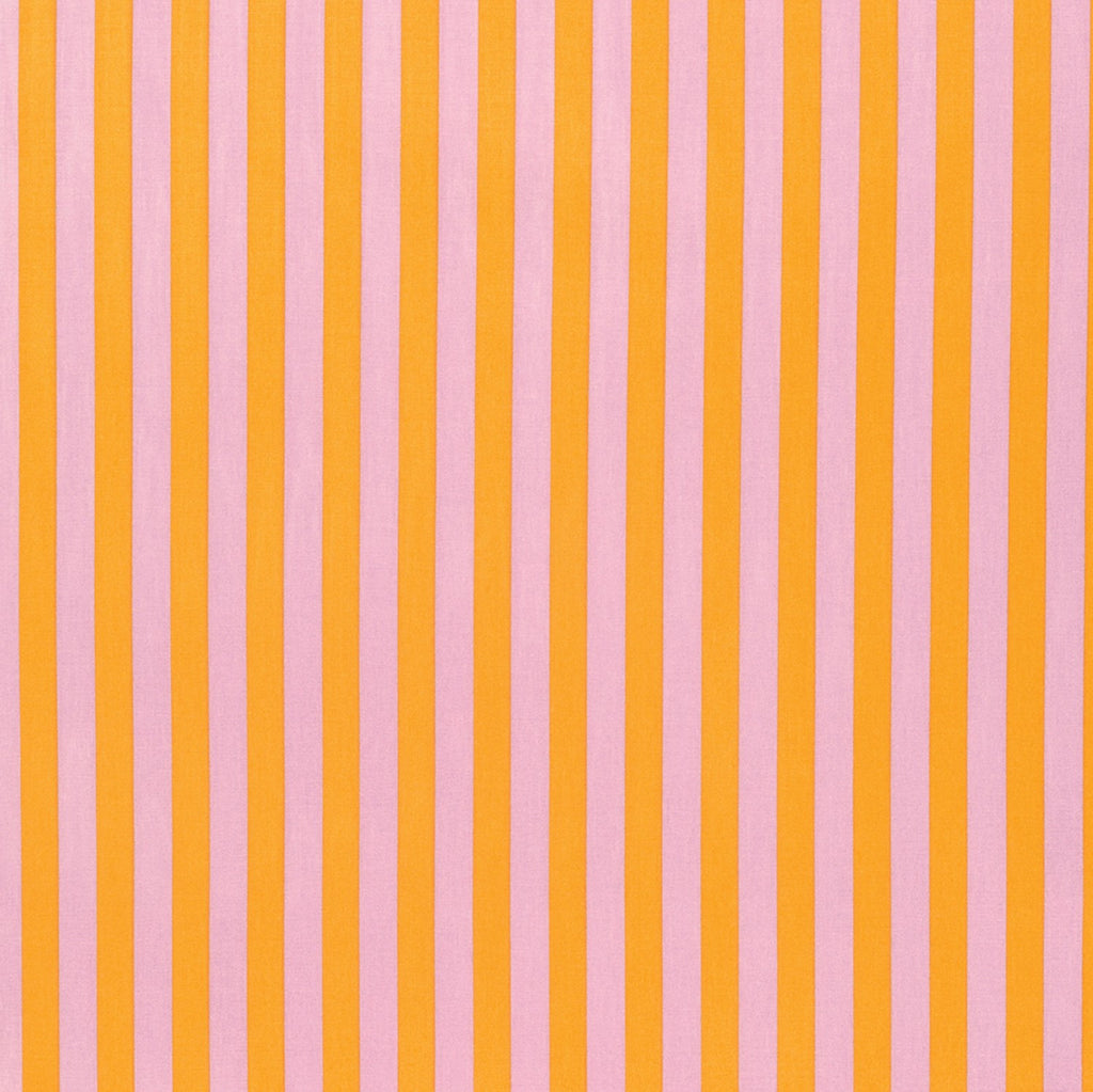 Tabby Marmalade Tent Stripe Tula Pink Fabric