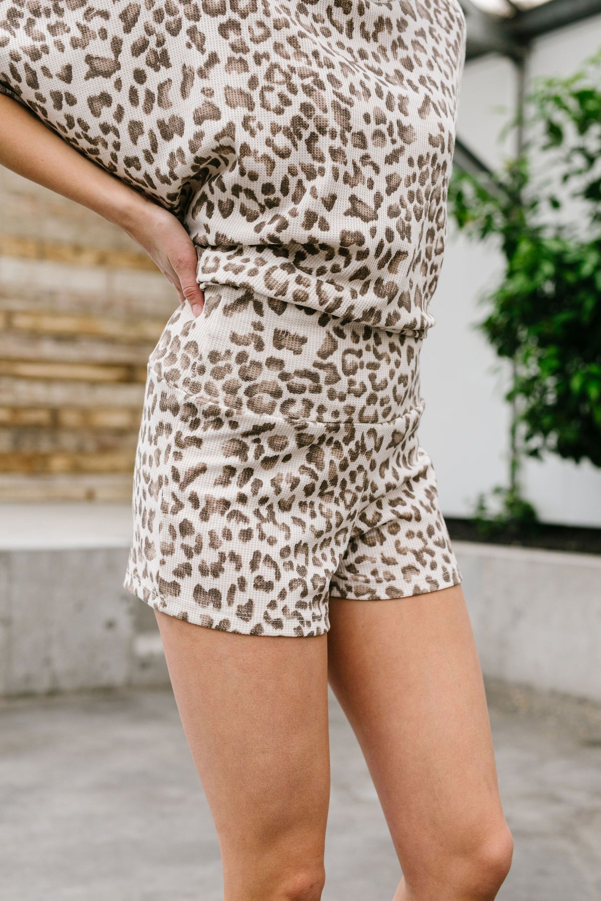 Leopard Print Stretchy Shorts
