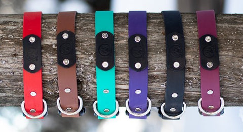 backwoods Dog Quick Release Collar Colours