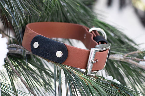 Backwoods Dog BioThane® Collar With Steel Buckle in Brown