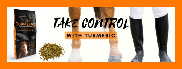 Take Control with Turmeric