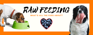 Raw Feeding - What's all the fuss about?