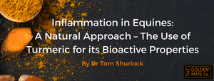 Inflammation in Equines: A Natural Approach – The Use of Turmeric for its Bioactive Properties - By Dr Tom Shurlock